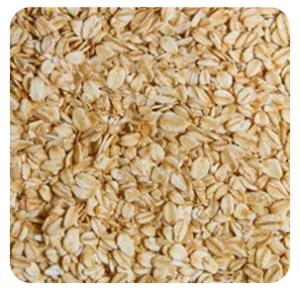 oatmeal3